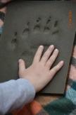 Junior Ranger Bär, Luchs, Wolf 24.04.19 102