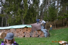 Junior Ranger Bär, Luchs, Wolf 24.04.19 107